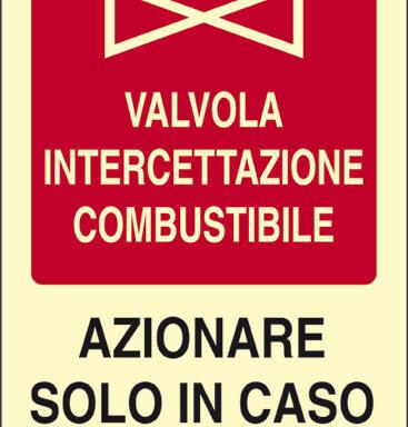VALVOLA INTERCETTAZIONE COMBUSTIBILE AZIONARE SOLO IN CASO DI INCENDIO luminescente