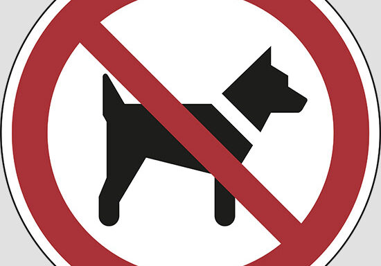 (no dogs)