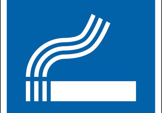 (area fumatori)