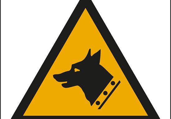 (pericolo cane da guardia – warning: guard dog)