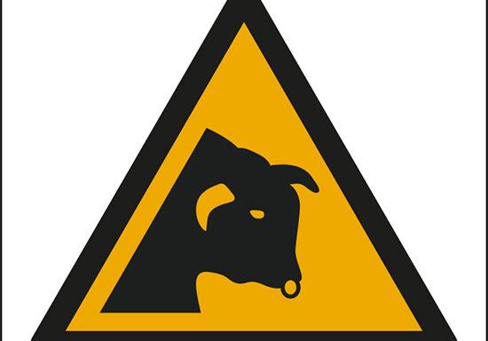 (avvertimento: toro – warning; bull)