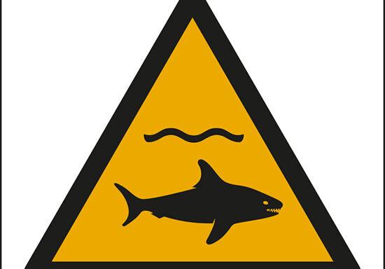 (attenzione; squali – warning; shark)